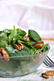 Spinach Salad Bowl with Nuts Royalty Free Stock Photo