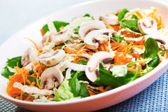 Spinach salad with carrots Royalty Free Stock Photography