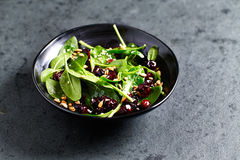 Spinach salad with dried cranberries and lemon-honey dressing Stock Photography