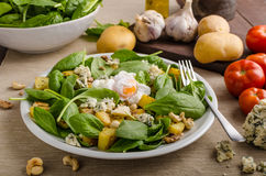 Spinach salad with egg benedict Royalty Free Stock Images