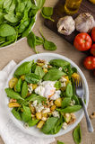 Spinach salad with egg benedict Royalty Free Stock Photos