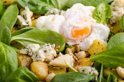 Spinach salad with egg benedict Stock Photos