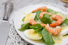 Spinach salad with eggs and shrimp Stock Photography