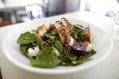 Spinach salad with grilled chicken breast Royalty Free Stock Images