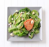 Spinach salad and marinated chicken Royalty Free Stock Photo
