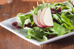 Spinach salad with pears and cranberries Royalty Free Stock Photo