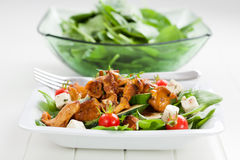 Spinach salad with roasted chanterelle mushrooms Royalty Free Stock Photography