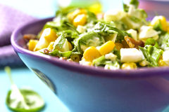 Spinach salad with sweet corn,boiled egg and fried bacon. Stock Images