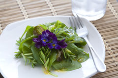 Spinach salad and water. Royalty Free Stock Photos
