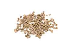 Spinach seeds Stock Photo