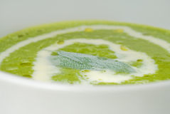 Spinach soup Stock Image