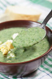 Spinach soup Stock Photos