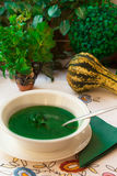 Spinach soup. Spinach cream soups full of minerals and vitamins Stock Photography