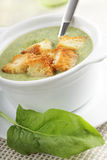 Spinach soup with croutons Royalty Free Stock Photos
