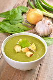 Spinach soup with croutons Royalty Free Stock Image