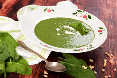 Spinach soup. stock photo