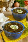Spinach soup with eggs Stock Images