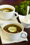 Spinach soup with eggs Stock Photos