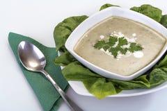 Spinach soup Stock Photos