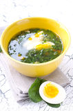 Spinach soup. Traditional Spinach soup with egg and fresh spinach leaf on top Stock Image
