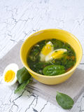 Spinach soup. Traditional Spinach soup with egg and fresh spinach leaf on top Stock Photography