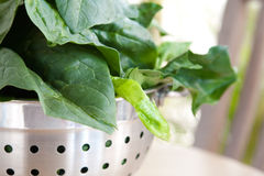 Spinach in a steel colander Royalty Free Stock Photos