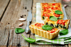 Spinach, tomatoes, mushroom quiche Stock Image