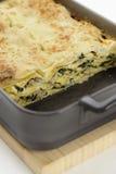 Spinach,tuna and ricotta lasagnes Stock Photos