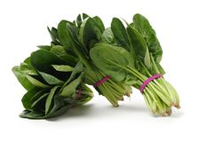 Spinach on white background. Spinach on a white background stock image