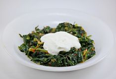 Spinach and yoghurt Royalty Free Stock Photos