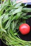 Spinaci & pomodoro dell'acqua Immagini Stock Libere da Diritti