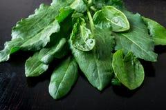 Spinaci bagnati su fondo nero Frutta verde detox Fotografia Stock