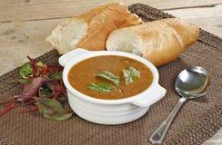 Spinaci dei ceci e zuppa di barbabietole Fotografia Stock Libera da Diritti