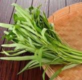 Spinaci dell'acqua, ipomea su fondo di bambù Fotografie Stock Libere da Diritti