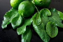 Spinaci e calce bagnati su fondo nero Frutta verde detox fresco Immagine Stock Libera da Diritti