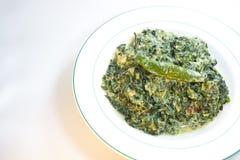 Spinat mit Kokosmilch Stockbild