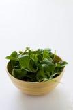 Spinat-Salat Lizenzfreie Stockbilder