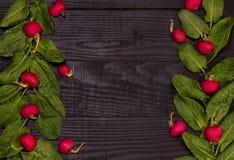 Spinat und Rettiche Lizenzfreie Stockbilder