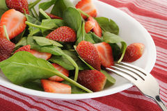 Spinats-Salat Stockfotografie