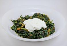 Spinazie en yoghurt royalty-vrije stock foto's