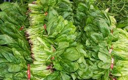 Spinazie op vertoning bij de markt van de landbouwer Royalty-vrije Stock Afbeeldingen