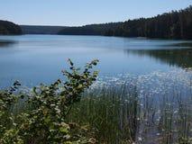 SpindÅ-¾ ius See (Litauen) Lizenzfreie Stockbilder