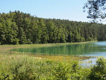 SpindÅ-¾ ius See (Litauen) Lizenzfreies Stockfoto