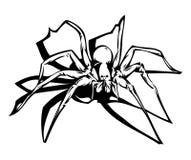 spindel Arkivfoto