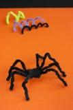 Spindel för allhelgonaaftonhantverket, svart på apelsinen. Royaltyfria Foton