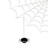 Spindel och cobweb Royaltyfri Bild