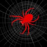 Spindel på cobweb vektor illustrationer