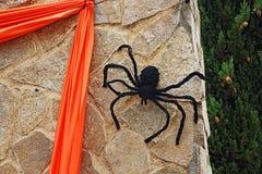 Spindel på väggen för allhelgonaafton Arkivbilder