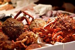 Spindelkrabba, fiskmarknad i Italien Royaltyfri Bild