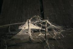 Spindelnätet och rostigt spikar två bräden Royaltyfri Foto